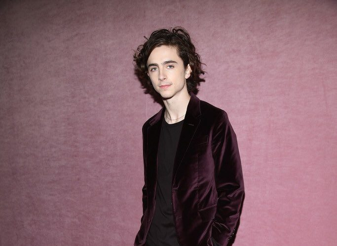 timothee-chalamet-berluti-berluti-menswear-fall-winter-2018-2019