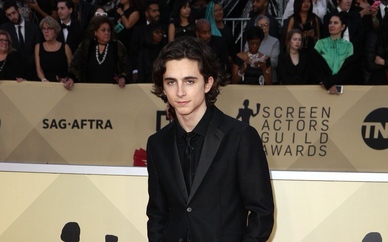 timothee-chalamet-in-calvin-klein-the-24th-annual-screen-actors-guild-awards